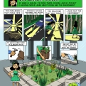 A comic created for the not-for-profit organization, Greening Forward